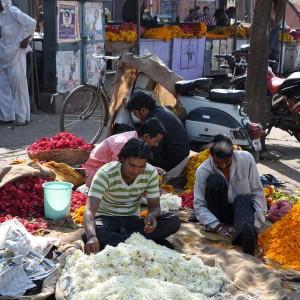 Jaipur 2010